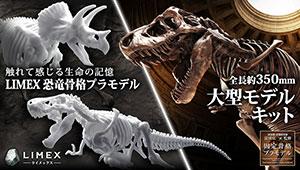 夏の恐竜骨格プラモデル情報!