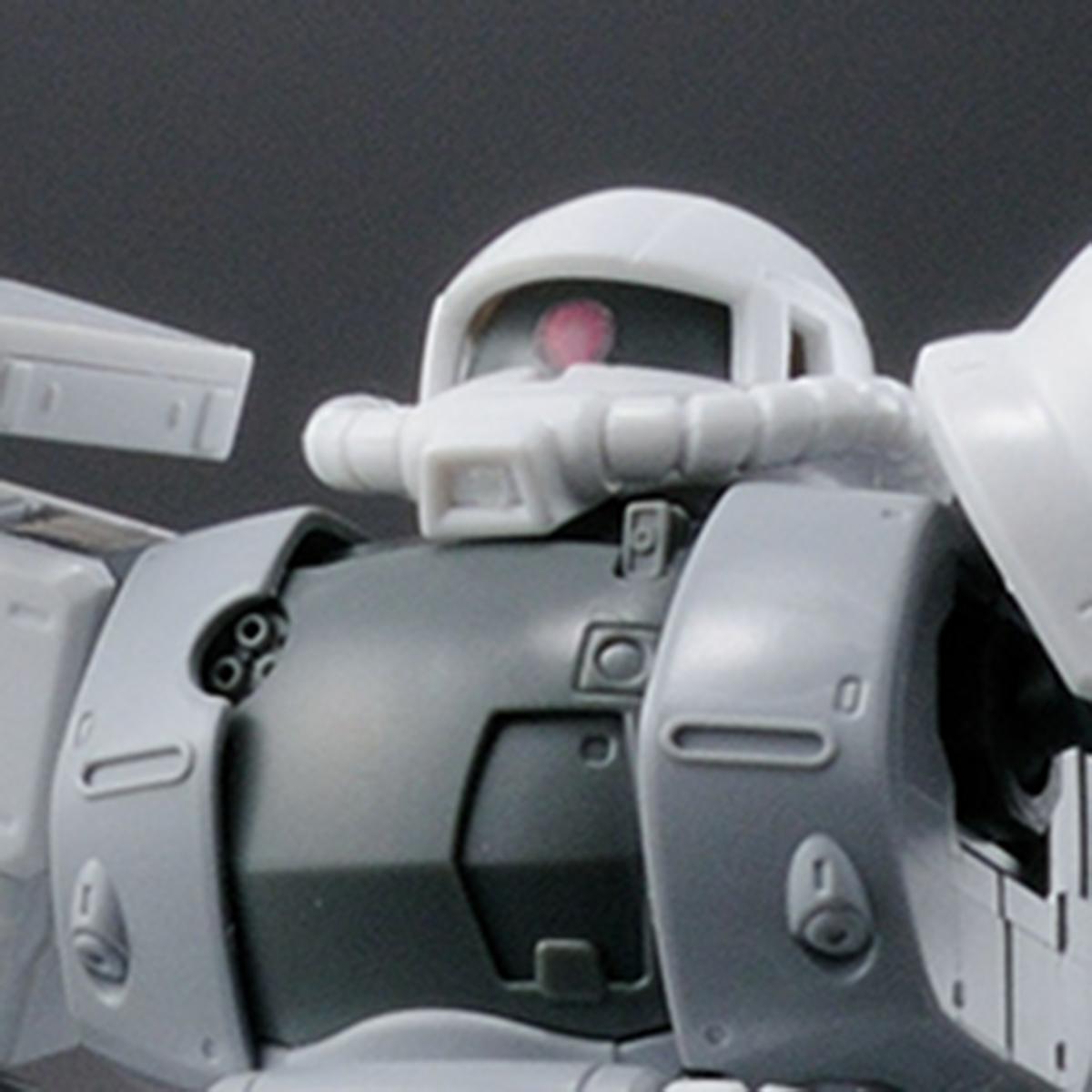 HG 1/144 ガンダムベース限定 ザクII TYPE C-6/R6 [ペインティングモデル]
